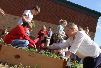 Impacts of school gardening – a systematic review
