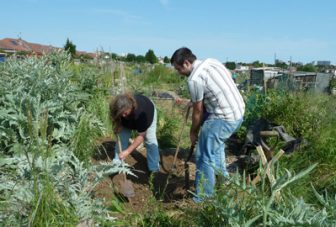 A systematic review of community gardening