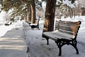 empty park bench in the snow