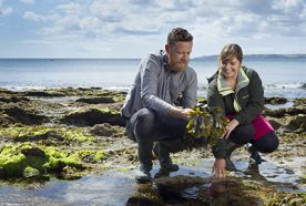 two researchers examine seaweed in a rock pool