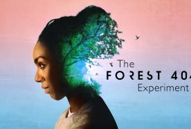 The Forest 404 branding - a woman's hair merges with a forest